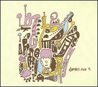 9 - Damien Rice