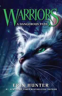 A Dangerous Path - Hunter, Erin