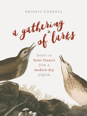 A Gathering of Larks: Letters to Saint Francis from a Modern-Day Pilgrim - Carroll, Abigail