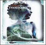 A Tribute to Evanescence