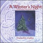 A Winter's Night: Christmas in the Great Hall