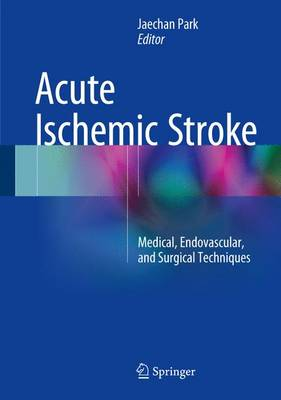 Acute Ischemic Stroke: Medical, Endovascular, and Surgical Techniques - Park, Jaechan (Editor)