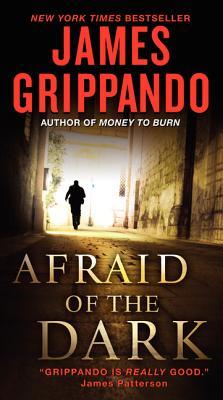 Afraid of the Dark - Grippando, James