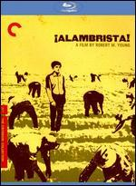 Alambrista! [Criterion Collection] [Blu-ray]