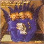 Albinoni: Sonate da Chiesa; Trattenimenti Armonici
