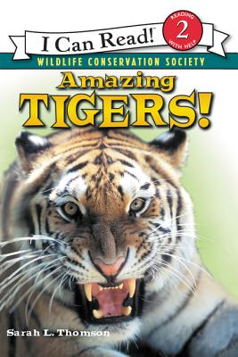 Amazing Tigers - Thomson, Sarah L