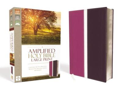 Amplified Bible-Am-Large Print: Captures the Full Meaning Behind the Original Greek and Hebrew - Zondervan