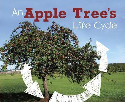 An Apple Tree's Life Cycle - Dunn, Mary R.