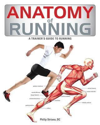 Anatomy of Running - Striano, Philip, Dr.