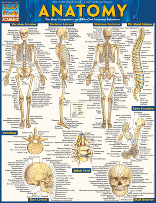 Anatomy - BarCharts Inc