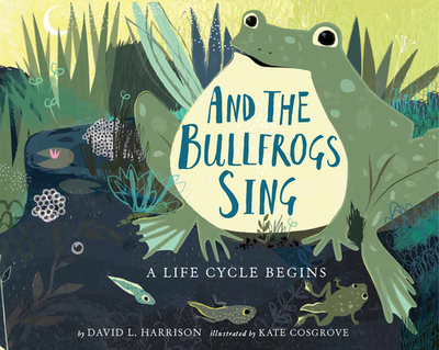 And the Bullfrogs Sing: A Life Cycle Begins - Harrison, David L