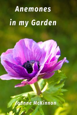 Anemones in My Garden - McKinnon, Joanne