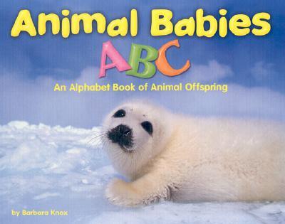 Animal Babies ABC: An Alphabet Book of Animal Offspring - Schuette, Sarah L