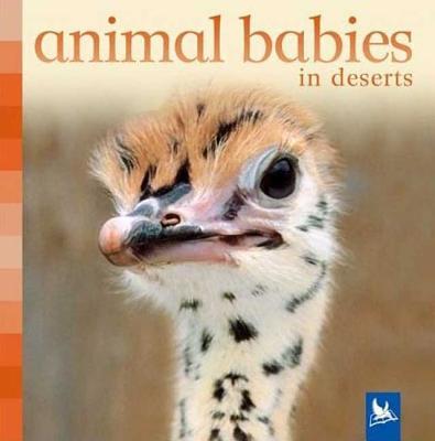 Animal Babies in Deserts - Nicholson, Sue