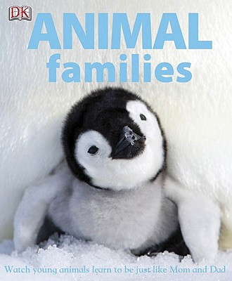 Animal Families - Mack, Lorrie