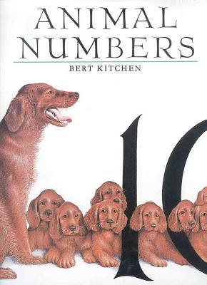Animal Numbers - Kitchen, Bert