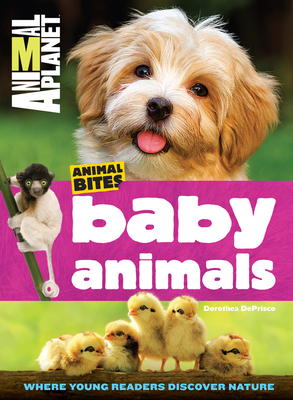 Animal Planet Baby Animals - DePrisco, Dorothea, and Animal Planet