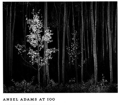Ansel Adams at 100 - Szarkowski, John, Mr., and Adams, Ansel, and San Francisco Museum of Modern Art