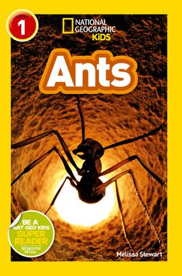 Ants - Stewart, Melissa