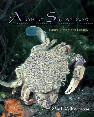 Atlantic Shorelines: Natural History and Ecology - Bertness, Mark D