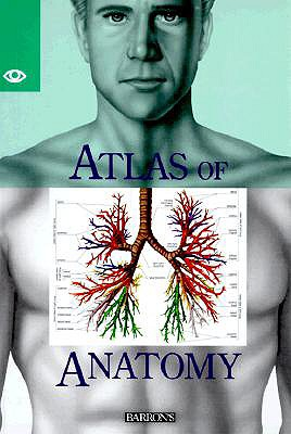 Atlas of Anatomy - Parramon Editorial Team, and Parramon Studios