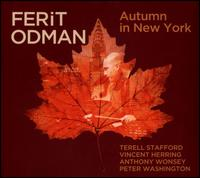 Autumn In New York - Ferit Odman
