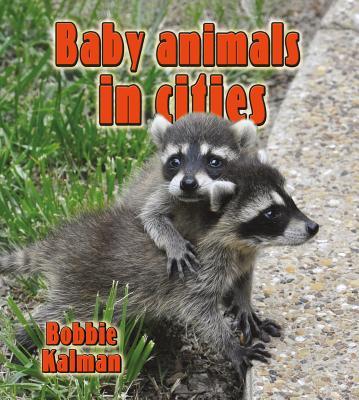 Baby Animals in Cities - Kalman, Bobbie