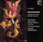 Bach: Adventskantaten, BWV 36, 61 & 62
