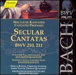 Bach: Secular Cantatas, BWV 210-211