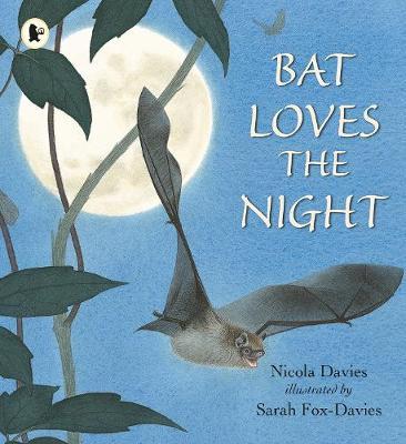 Bat Loves the Night - Davies, Nicola