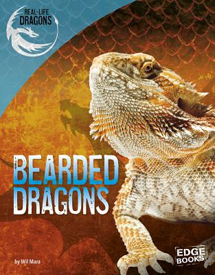 Bearded Dragons - Mara, Wil
