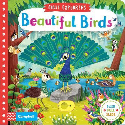 Beautiful Birds - Chorkung (Illustrator), and Books, Campbell