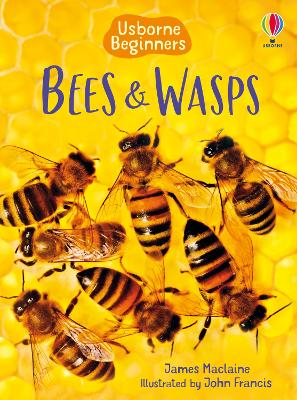 Bees and Wasps - Maclaine, James