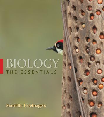Biology: The Essentials - Hoefnagels, Marielle, Dr.