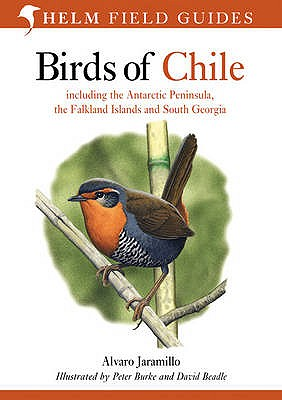 Birds of Chile: Including the Antartic Peninsular, the Falkland Islands and South Georgia - Jaramillo, Alvaro, and Burke, Peter