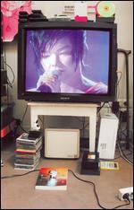 Björk: Live at Shepherd's Bush - David Barnard