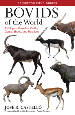 Bovids of the World: Antelopes, Gazelles, Cattle, Goats, Sheep, and Relatives - Castelló, José R, Dr., and Huffman, Brent (Foreword by), and Groves, Colin (Foreword by)