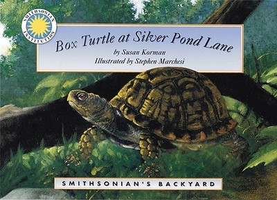 Box Turtle at Silver Pond Lane - Korman, Susan