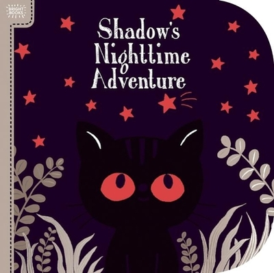 Bright Books: Shadow's Nighttime Adventure -