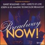 Broadway Now: Hits, Vol. 1
