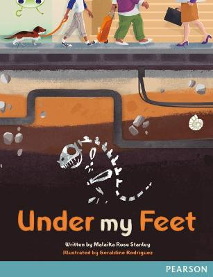 Bug Club Comprehension Y5 Under My Feet 12-pack - Stanley, Malaika Rose