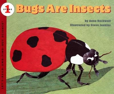 Bugs Are Insects - Rockwell, Anne