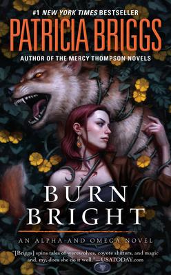 Burn Bright - Briggs, Patricia