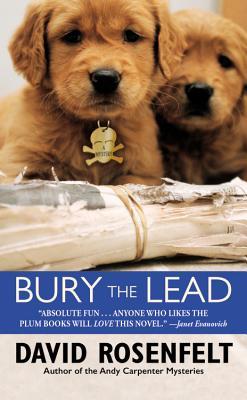 Bury the Lead - Rosenfelt, David