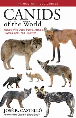 Canids of the World: Wolves, Wild Dogs, Foxes, Jackals, Coyotes, and Their Relatives - Castelló, José R, Dr., and Sillero-Zubiri, Claudio (Foreword by)