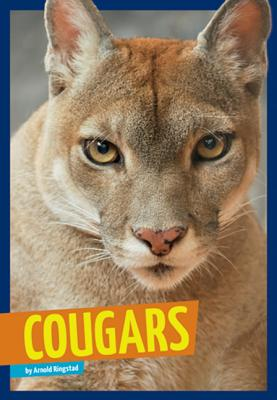 Cougars - Ringstad, Arnold