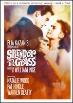 Splendor in the Grass (Dvd)