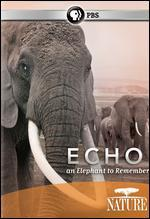 Echo: an Elephant to Remember [Dvd]