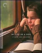 My Life as a Dog [Criterion Collection] [Blu-ray]