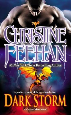 Dark Storm - Feehan, Christine